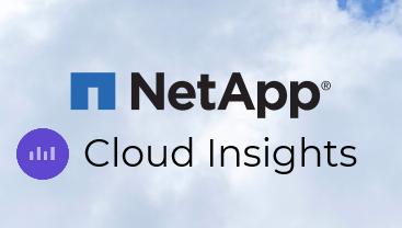 NetApp Cloud Insight per la salvaguardia dei dati nel multicloud ibrido thumbnail