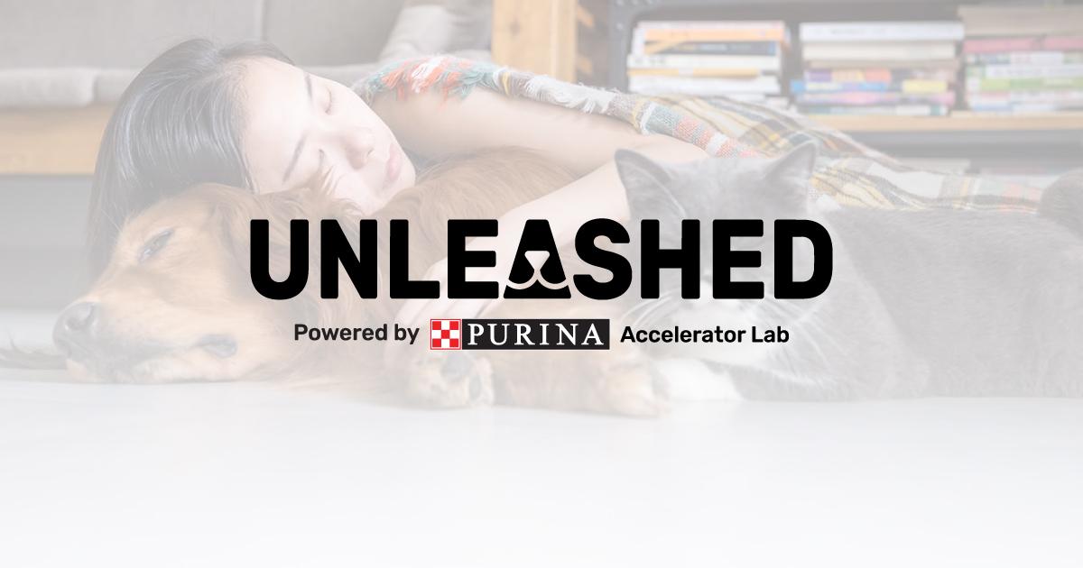 """Parte PURINA Unleashed 2021, il programma di accelerazione per le startup attive nel """"PetTech"""" thumbnail"""