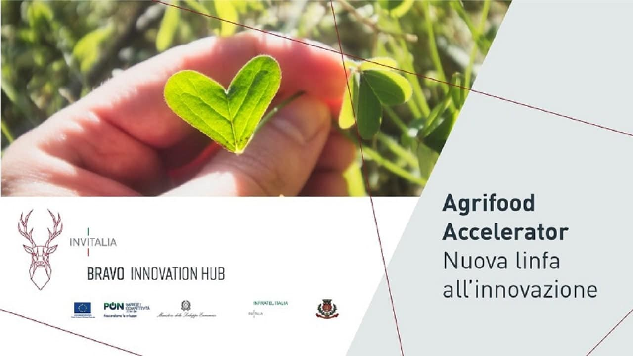 Partita la call per Bravo Innovation Hub Agrifood thumbnail